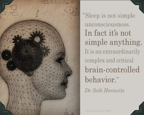 Sleep Quote- Dr. Seth Horowitz